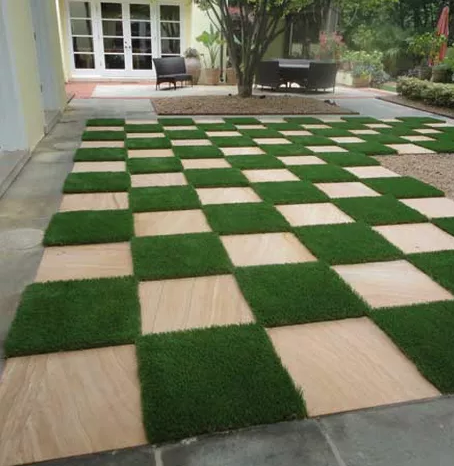 Drought Resistant Turf